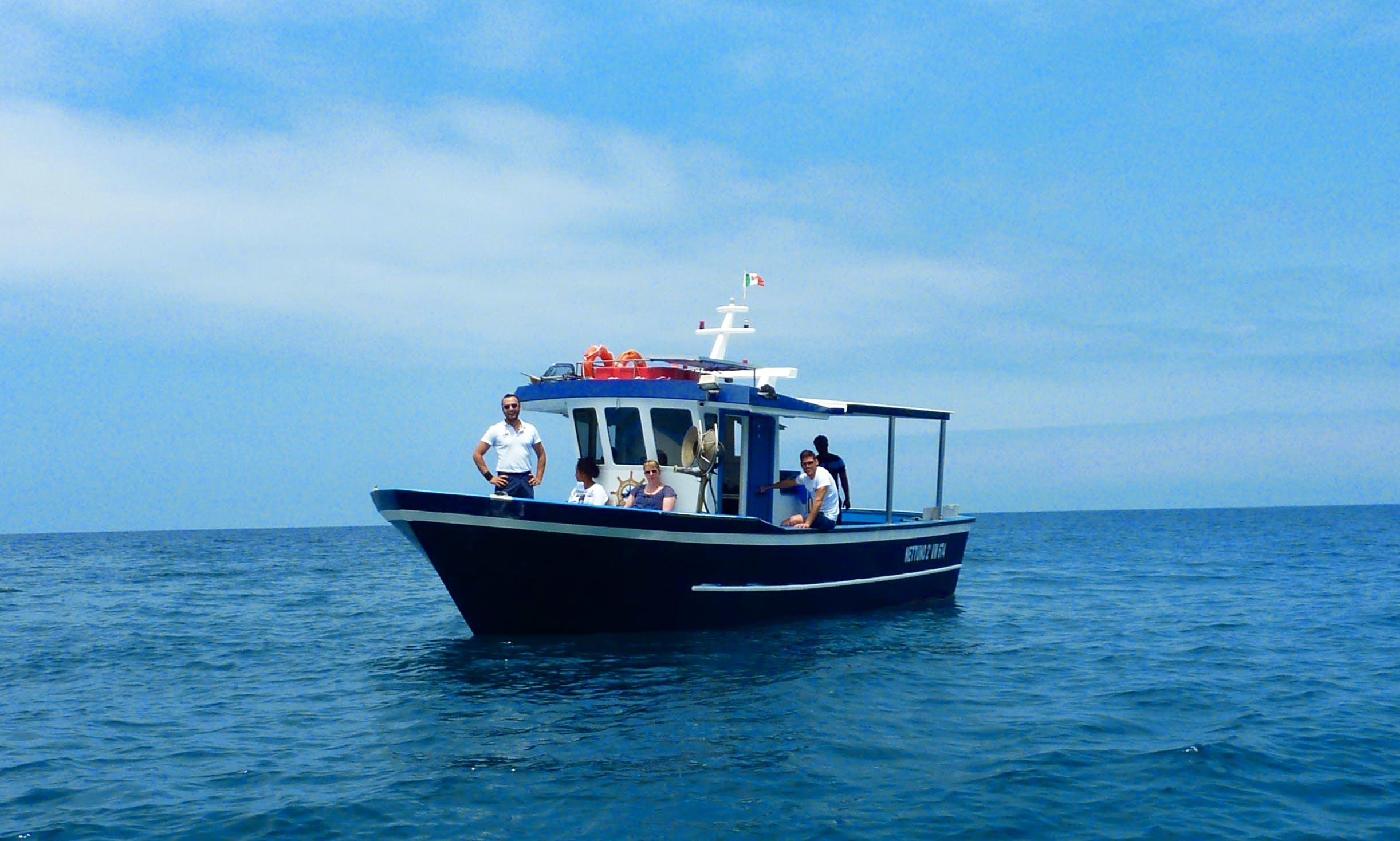 Dolphin Tour in Vibo Valentia