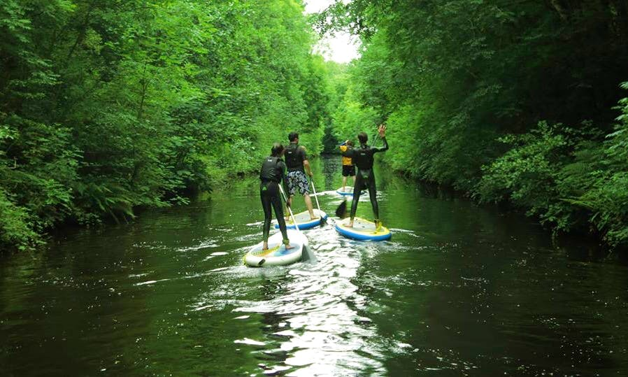 Guided Stand Up Paddleboarding Safari In Leitrim