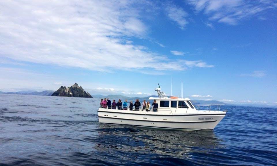 Boat Cruise On Skellig Islands