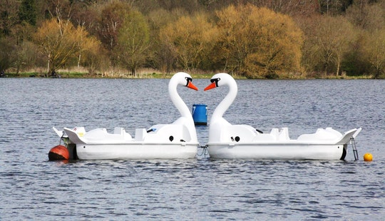 Paddle Boat In Peterborough