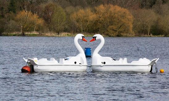 Paddle Boat In Peterborough