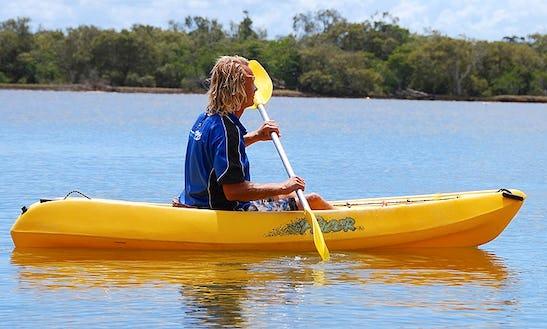 Fun Kayak Rides In Noosaville, Queensland - Australia