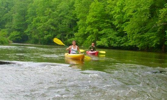 Kayak Trips On New River