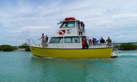 Boat Diving Trips In Marathon