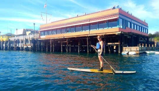 Stand Up Paddle Rental And Lesson In Monterey