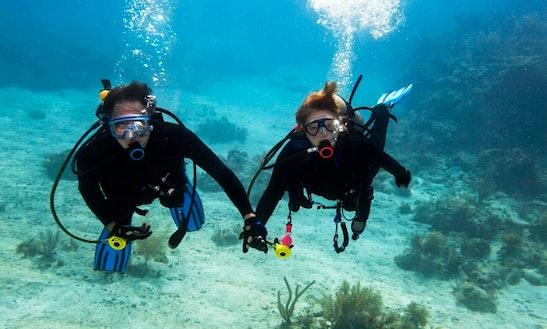 Diving Trips In Motobu-chō