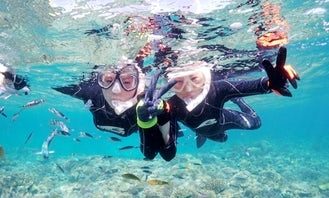 See the Stunning Marine Life in Motobu-chō, Okinawa-ken