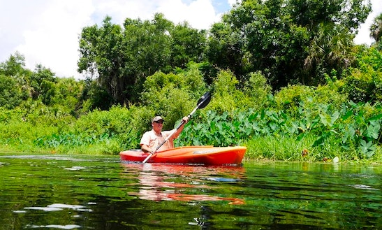 Single Kayak Rental And Tours In Clearwater