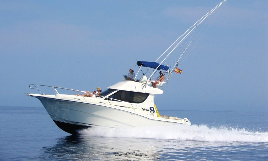 34' Sport Fisherman Fishing Charters in Alcudia, Spain