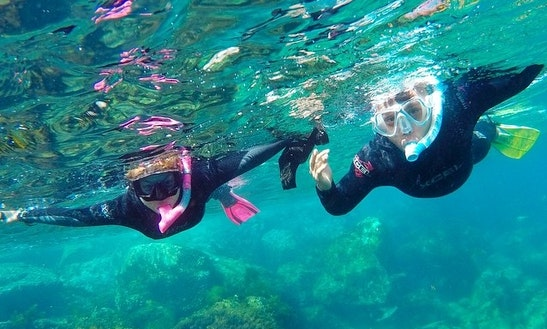 Exciting Snorkeling Trip In Avalon, California