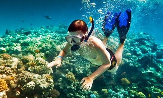 Explore The Underwater Landscape Of Denpasar Timur, Indonesia