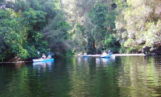 Double Kayak Hire And Tours In Bollier