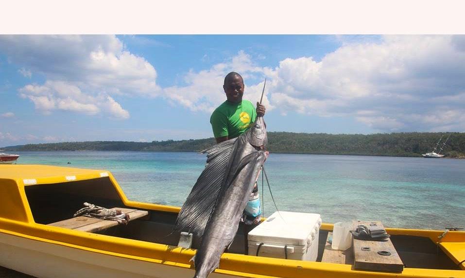 Spearfishing Noosa