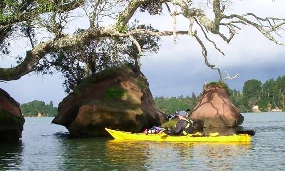 Single Kayak lessons in Tauranga
