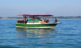 Whale and Dolphin Watching Tour in Mirissa