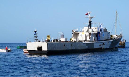 Diving Cruises Aboard The 15 Person Sg121 Dive Boat In Yanıklar Köyü, Turkey