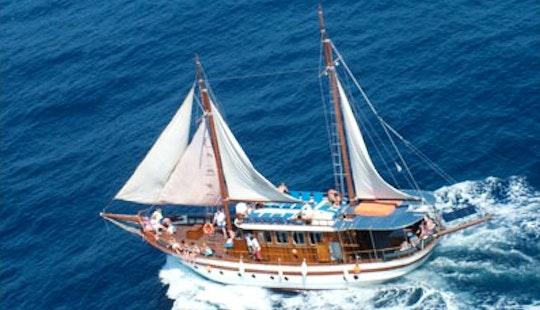 Venus Sea Cruises Tour In Paphos