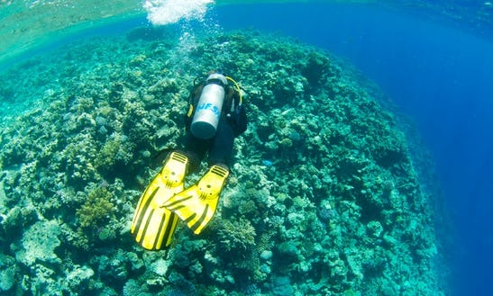 Daily Guided Dive Trips On Famous Dive Sites In Dahab, Egypt