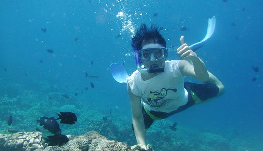 Snorkeling In Dubrovnik