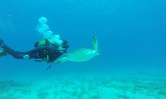 Diving in Paralimni
