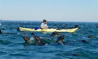 Single Kayak Rental in Walvis Bay, Namibia