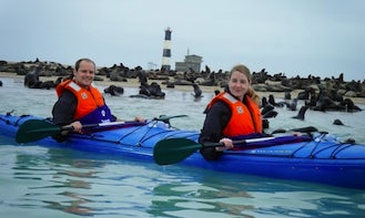Guided Kayaking Tour to Pelican Point Peninsula in Namibia