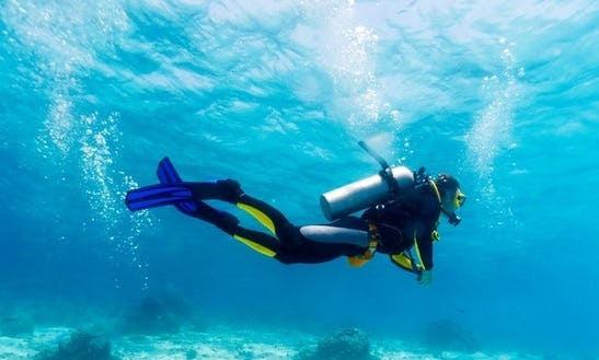 Diving Trips And Courses In Poland