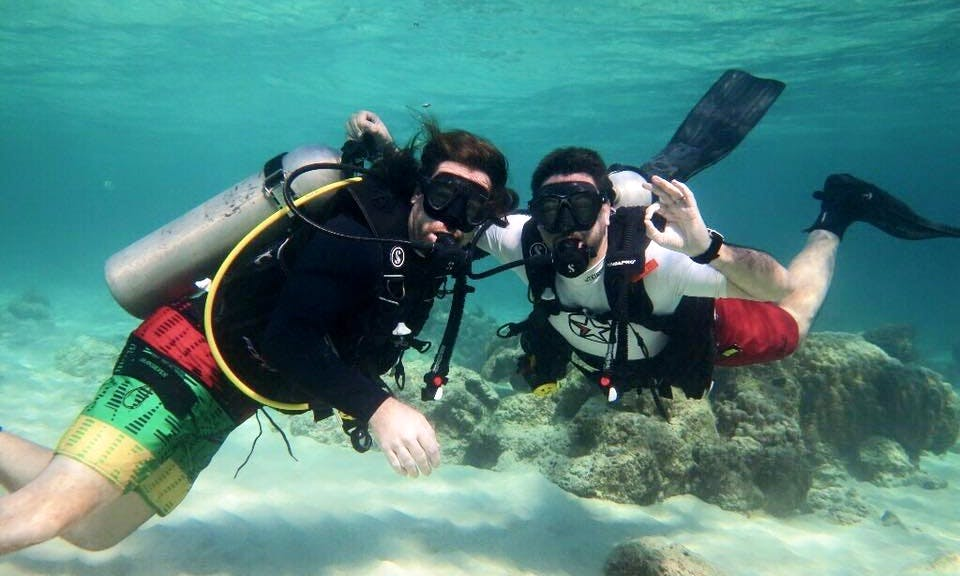 Diving Trips and Courses in Seogwipo, South Korea