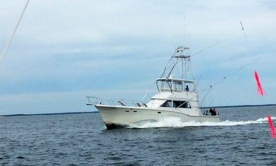 Fishing Charter On 46' Hatteras Sportfisherman In Cohasset, Massachusetts