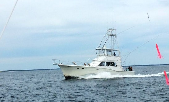 Fishing Charter On 46' Hatteras Sportfisherman In Cohasset, Massachusetts