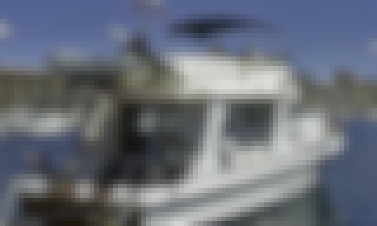 'Odysseus' Motor Boat Hire in Marseille