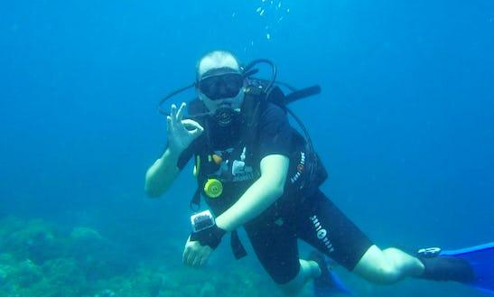 Diving Trips In Ko Samui