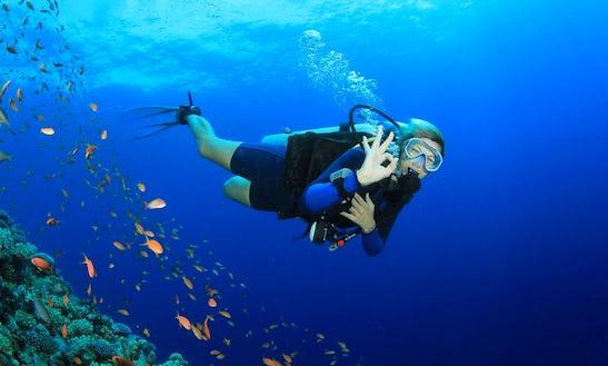 Diving Lessons In Alghero