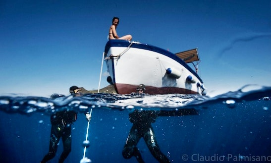 Diving And Snorkelling In Lampedusa E Linosa