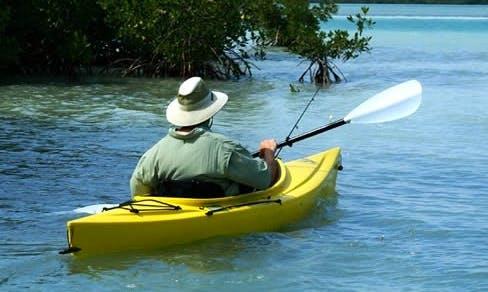 Explore Islamorada with Single Kayak