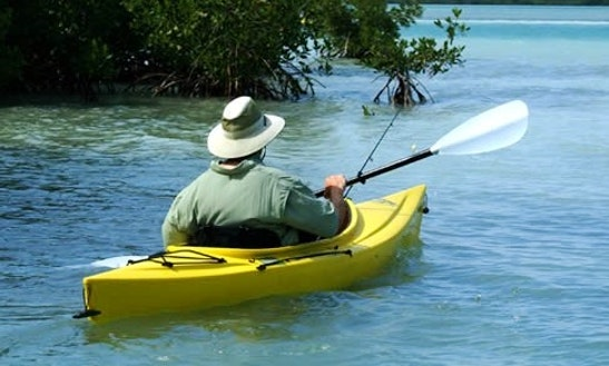 Single Kayak Rental In Islamorada