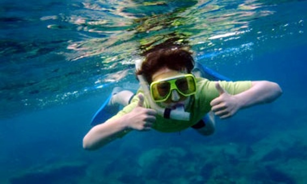 What Is Snorkeling Gay - Other - Adult Videos-5182