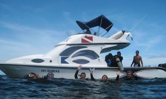 Scuba Diving Day Trip With Bilingual Guides In Puerto Ayora, Ecuador
