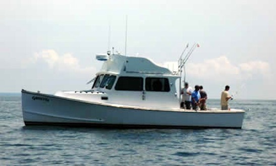 34' Sport Fisherman Charter In Provincetown, Massachusetts