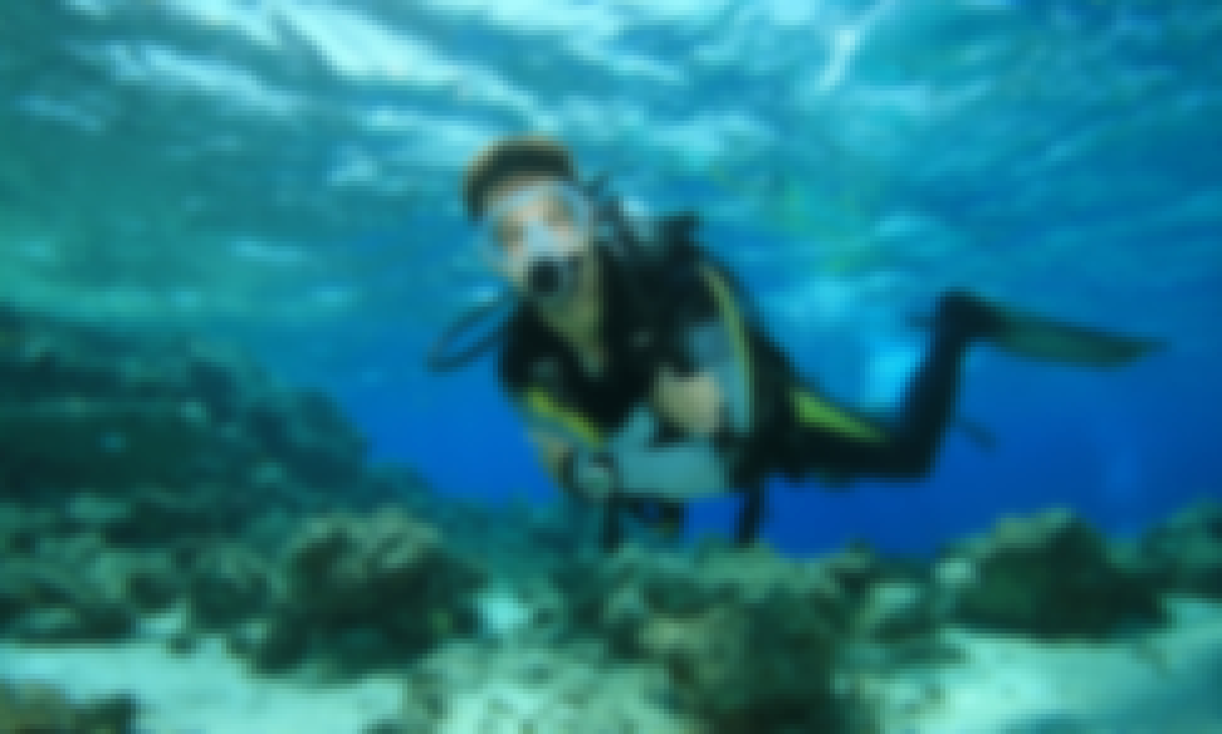 Diving Trips and PADI Diving Courses In Hjalteyrarvegur