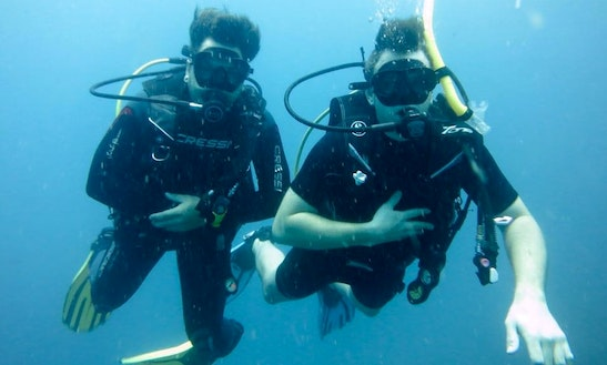 Ko Samui Diving Trips & Courses!