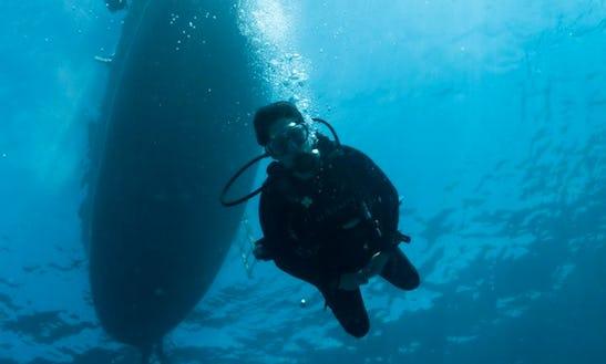 Diving In Mafia Island