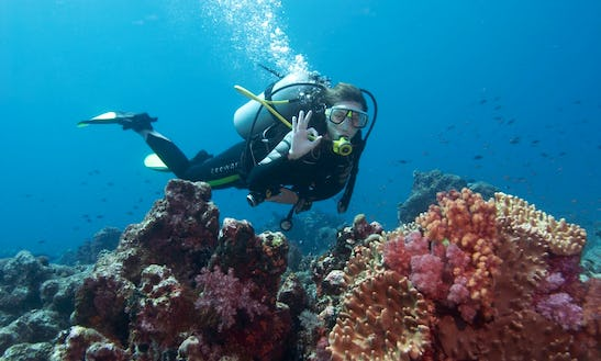 Rib Diving Trips And Courses In Girne, Cyprus
