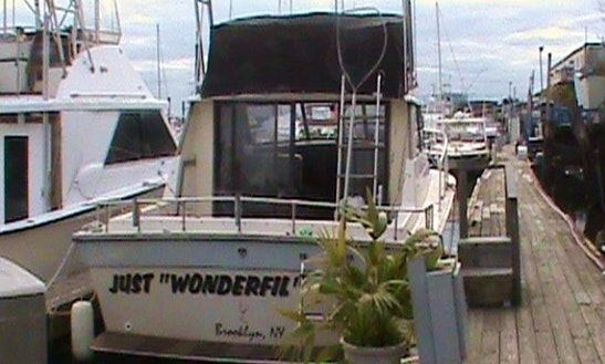 Just  Wonderfil Sport Fishing Charter In