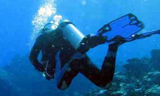 Diving In Kecamatan Buleleng