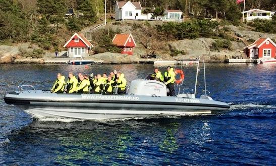 Rib Charter In Midsund