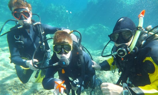 Learn To Dive Today In San Pawl Il-baħar, Malta
