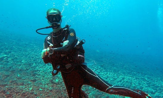 Diving Trips & Courses  In Palamós