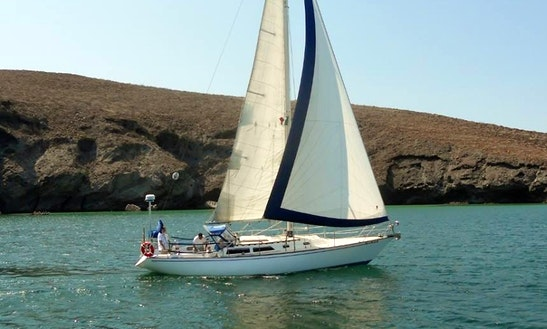38'  Catalina Sloop Bare Boat Or Captained  In La Paz