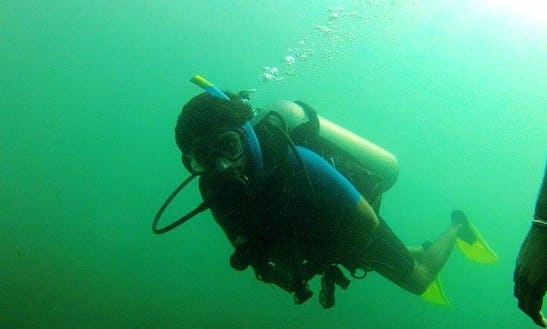 Daily Diving In Cavelossim